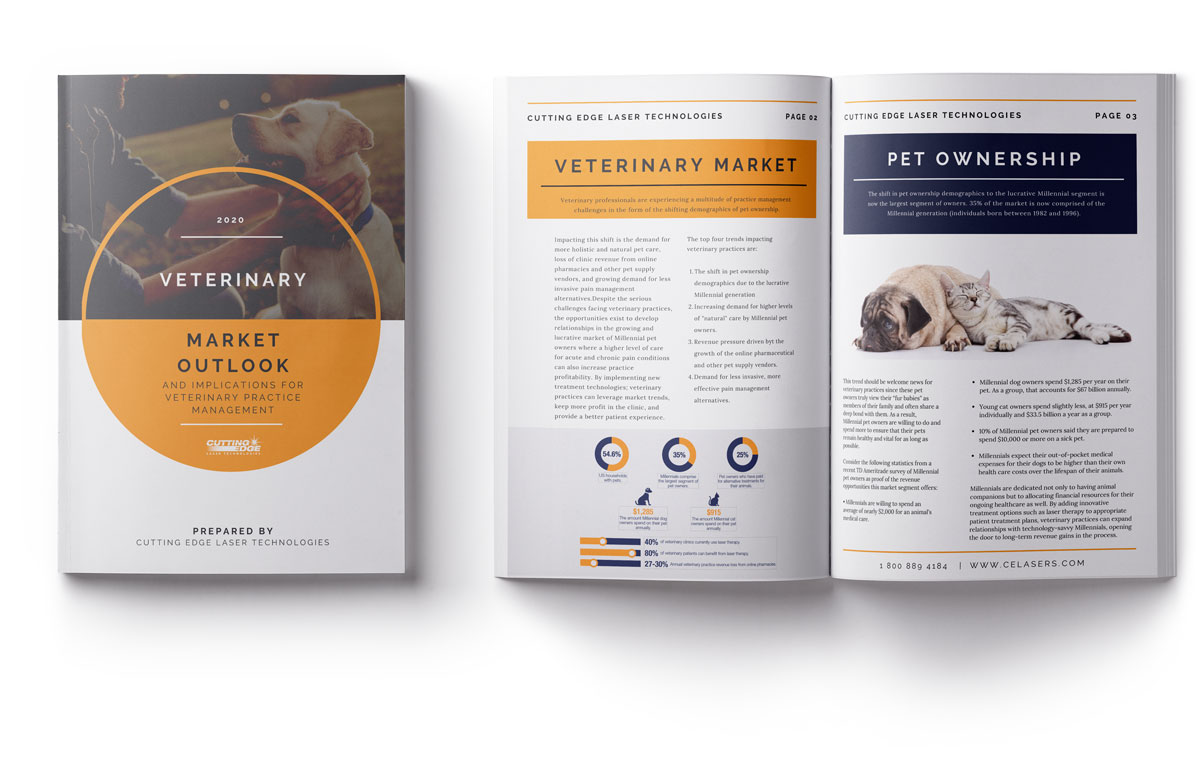 2020-Veterinary-Market-Outlook-Mockup